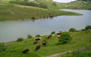 Trekking Lago Trearie e Cartolari