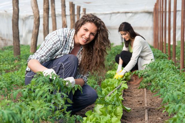 In Italia c'è bisogno di un impegno 'verde rosa' da parte delle Istituzioni per garantire l'inclusione, la parità di genere e la formazione...