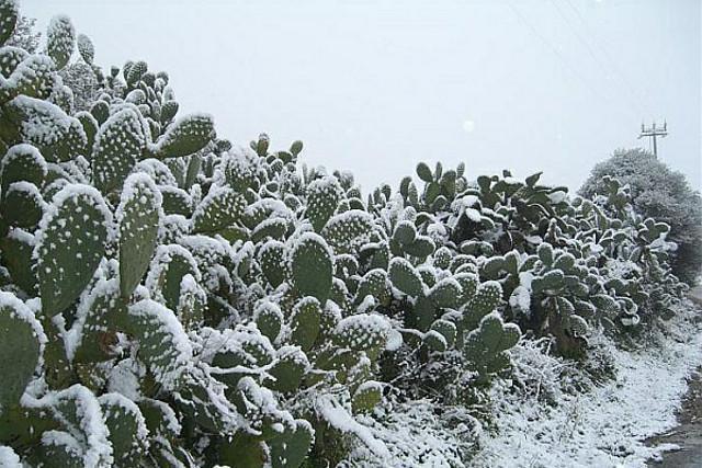 La neve ha bloccato la Sicilia