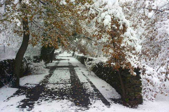 Sentiero innevato lungo il Parco dell'Etna