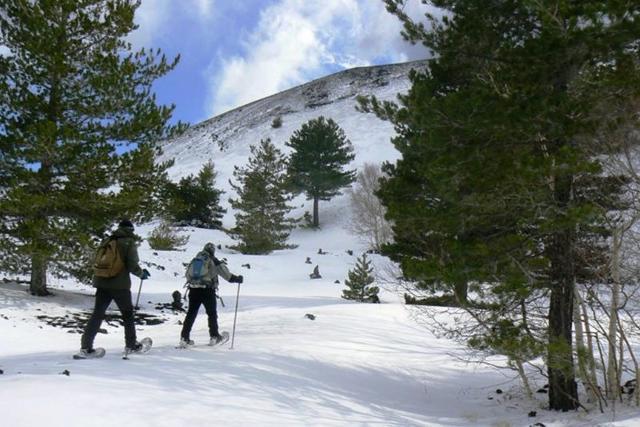 E' possibile avventurasi, con gli sci o le ciaspole ai piedi, in quasi tutti i versanti dell'Etna seguendo i sentieri della forestale.