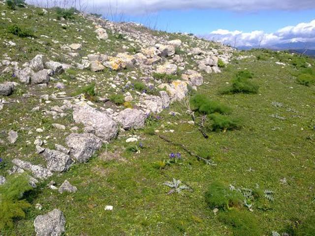 Il sito archeologico di Montagna di Balate