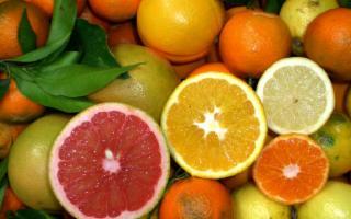 Dagli agrumi di Sicilia una nuova plastica biologica