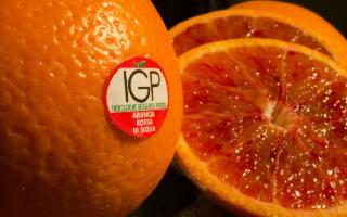 Aperta la campagna di adesione al Consorzio di tutela Arancia Rossa di Sicilia IGP