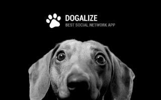 Dogalize - Lex
