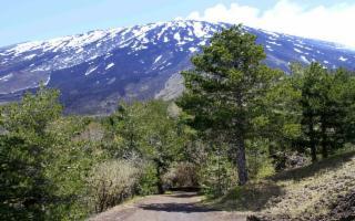 L'Etna ad alta quota: crateri sommitali e Valle del Bove