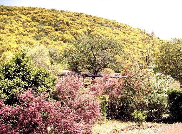 Parco Monte Serra