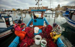 Riunione dei ministri Ue per scongiurare la crisi del settore ittico nel Mediterraneo