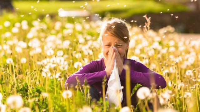 È Primavera e tornano le allergie. È possibile confondere i sintomi con quelli del Covid-19?