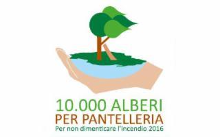 A Pantelleria messe a dimora le prime 250 piante di mirto