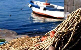 Fare pescaturismo alle Egadi