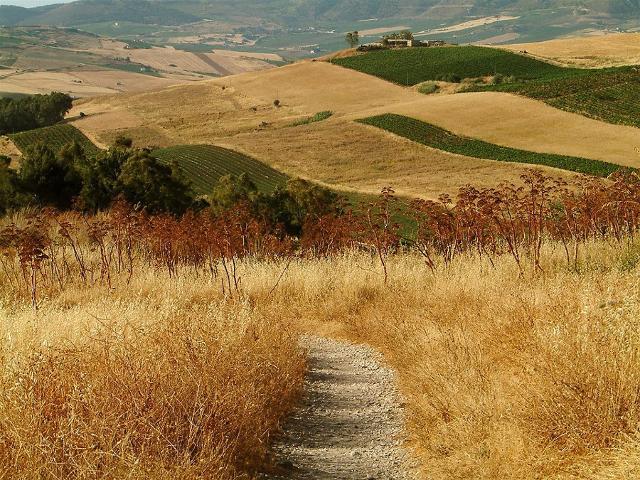 nel-cuore-rurale-della-sicilia
