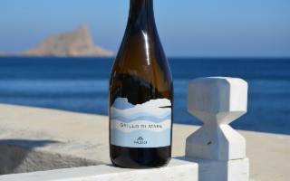 Al Vinitaly la Casa vinicola Fazio presenta il suo nuovo ''Grillo di Mare''