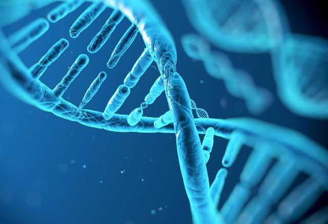 Nel 2012 è stata individuata la causa genetica dell'Emiplegia Alternata dell'Infanzia: un gruppo di mutazioni specifiche nel gene ATP1A3