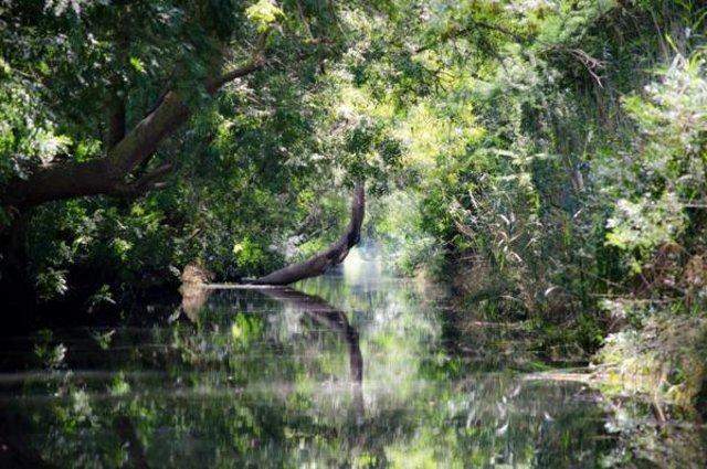 Scorcio paesaggistico lungo il fiume Ciane