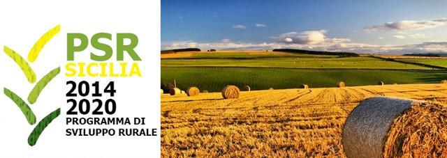 Buone notizie anche dal Programma di sviluppo rurale: la spesa raggiunta è stata di 562,3 milioni di euro.