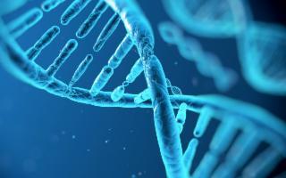 Think Tank PANTAMED, una ricerca sul genoma nell'isola di Pantelleria