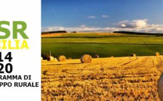 L'Ente sviluppo agricolo siciliano al servizio di 40 Comuni per i bandi Psr