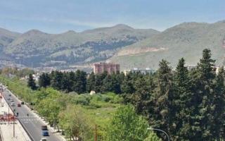 Sit-in per il Parco Villa Turrisi, Wwf: Aprire il primo nucleo