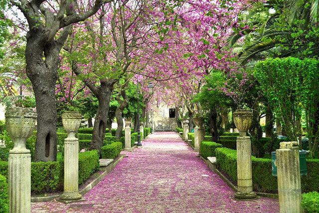 Un viale del Giardino Ibleo, a Ragusa Ibla