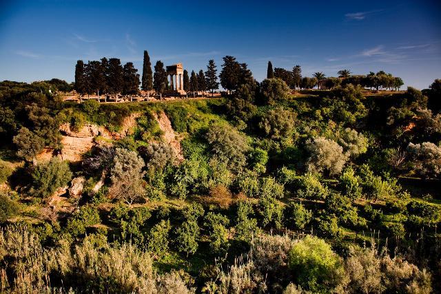Giardino della Kolymbethra - ph Vincenzo Cammarata | FAI - Fondo Ambiente Italiano