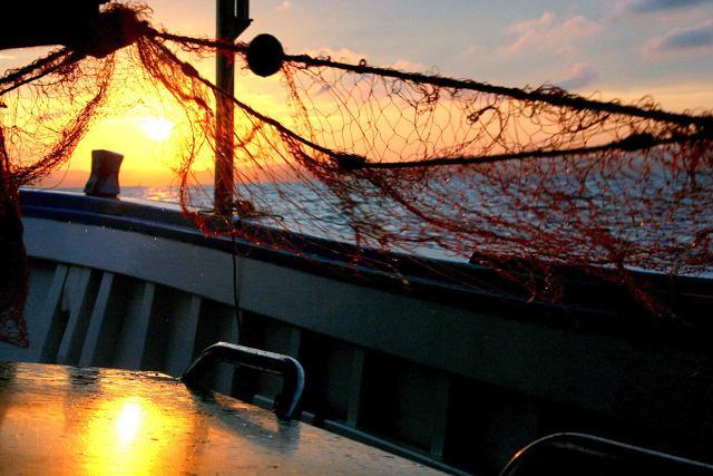 All'alba i pescatori salpano per andare al largo a recuperare le reti...