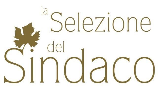 ''Selezione del Sindaco'', la Sicilia conquista 30 premi