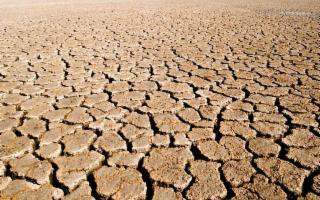 In Sicilia caldo record e allarme siccità