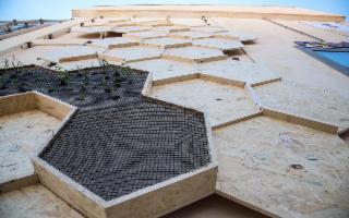 L'Arte urbana per omaggiare il mondo delle api