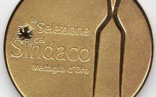 Selezione del Sindaco, la Sicilia conquista 30 premi