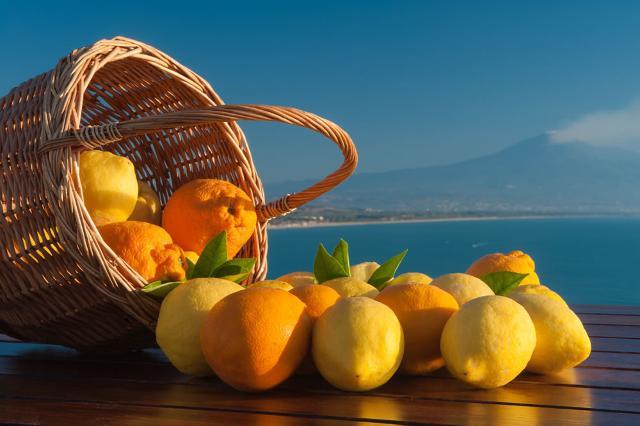 Novità sull'export di agrumi siciliani in Asia e in Europa