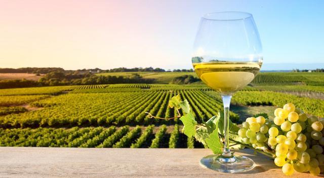 I Vini Doc Sicilia verso le 30 milioni di bottiglie