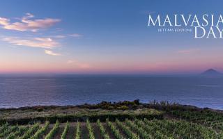 Sabato è il Malvasia Day, 14 produttori narrano la viticoltura delle Eolie