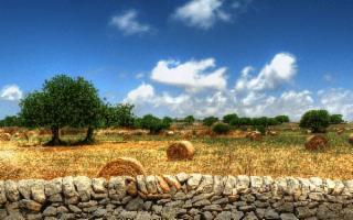 ''L'Arte dei muretti a secco'' Patrimonio Unesco