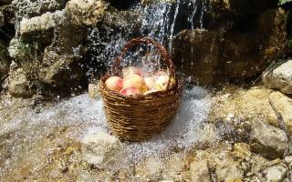 Sagra della Pesca - I° Weekend