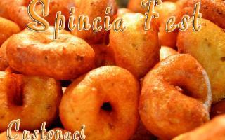 Spincia Fest