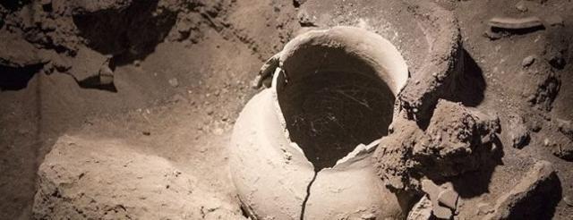 Il vino più antico del mondo è siciliano