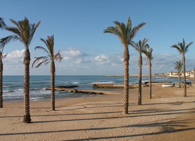La spiaggia e le palme di Marina di Ragusa
