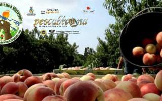 Tour in Azienda - Raccolta Tradizione e Gusto della Pescabivona
