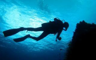 A Ustica arrivano le Sentinelle del Mare