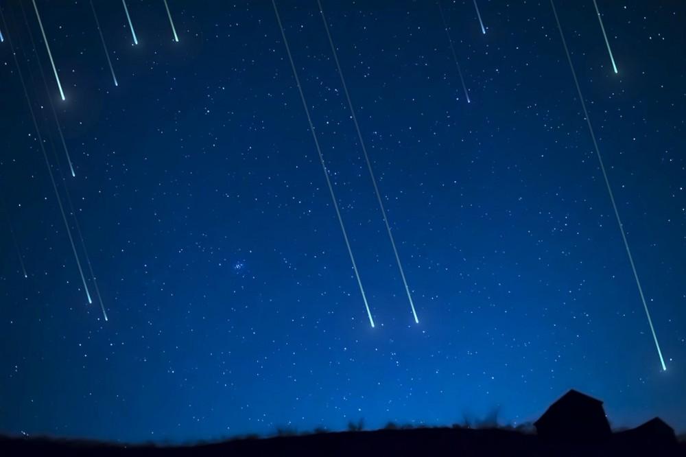 Zafferana Etnea - Calici di stelle