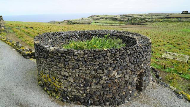 Un Giardino Pantesco