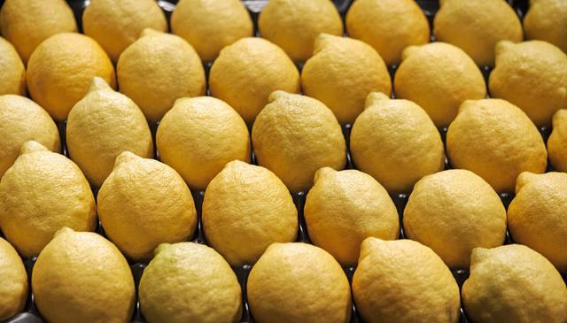 Limone di Siracusa IGP, è boom di iscrizioni al Consorzio