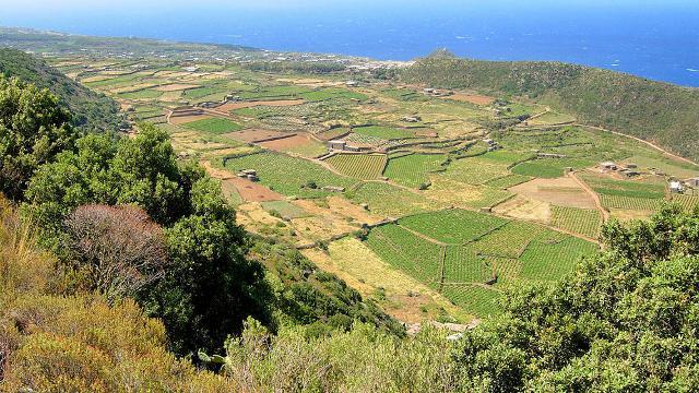 Pantelleria, nei secoli, è stata consacrata alla fecondità dai popoli che l'hanno abitata, ed è questo un denominatore comune fra le genti che si sono succedute sull'isola