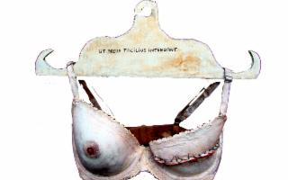 In pectore - A seno nudo - Io come voi