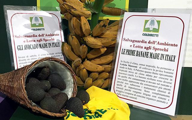 Tanti nuovi prodotti dell'agroalimentare ''made in Italy'' sono siciliani