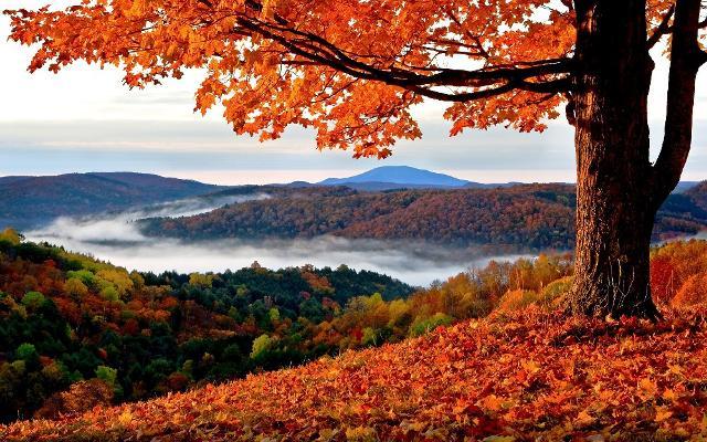 l-autunno-in-sicilia-tra-sagre-sapori-e-tradizioni