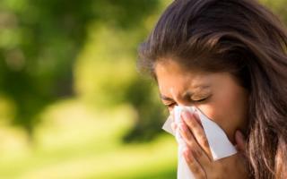Le allergie sono la quarta causa di malattia cronica in Italia