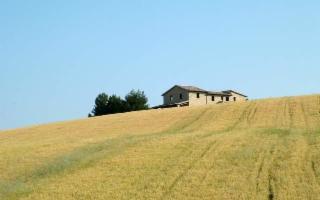 La Sicilia è la seconda regione italiana per numero imprese agricole