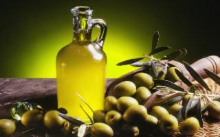 Olivicoltura. A Catania la selezione dei migliori oli siciliani